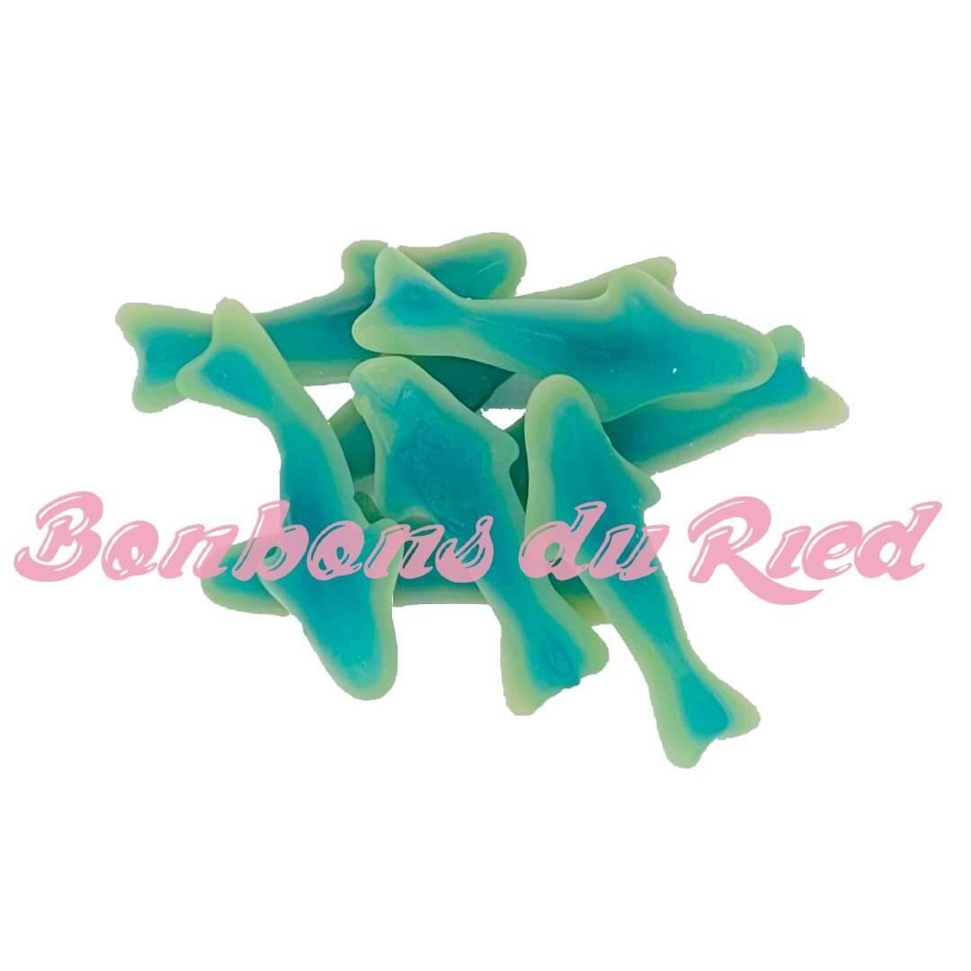 Requins bleus