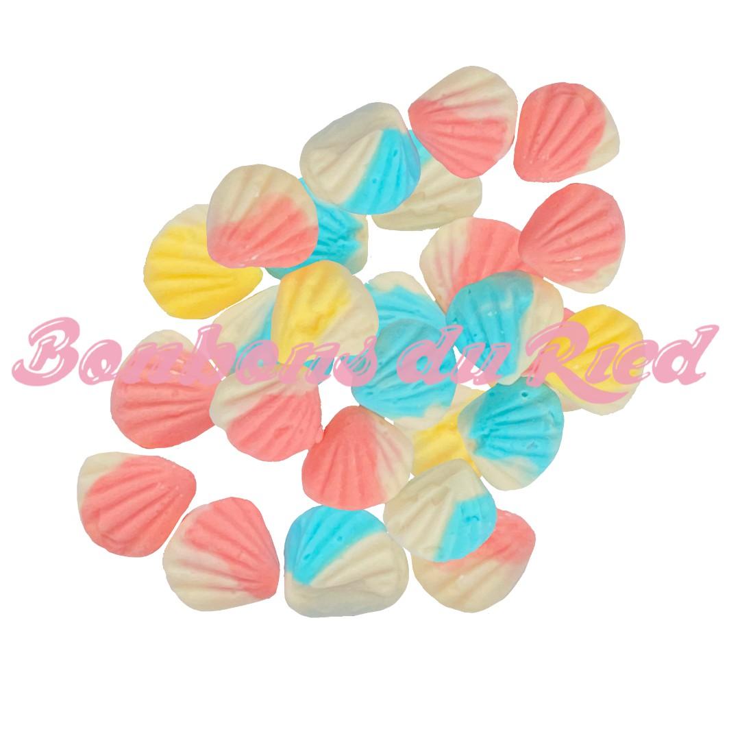 bonbon forme coquillage